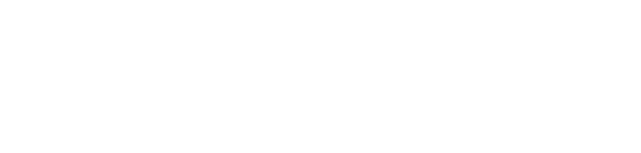 LIQ Auto Logo White