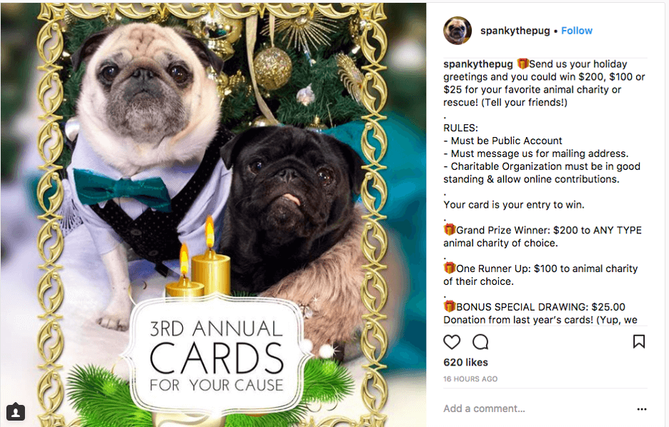 Instagram Holiday Giveaway Ideas