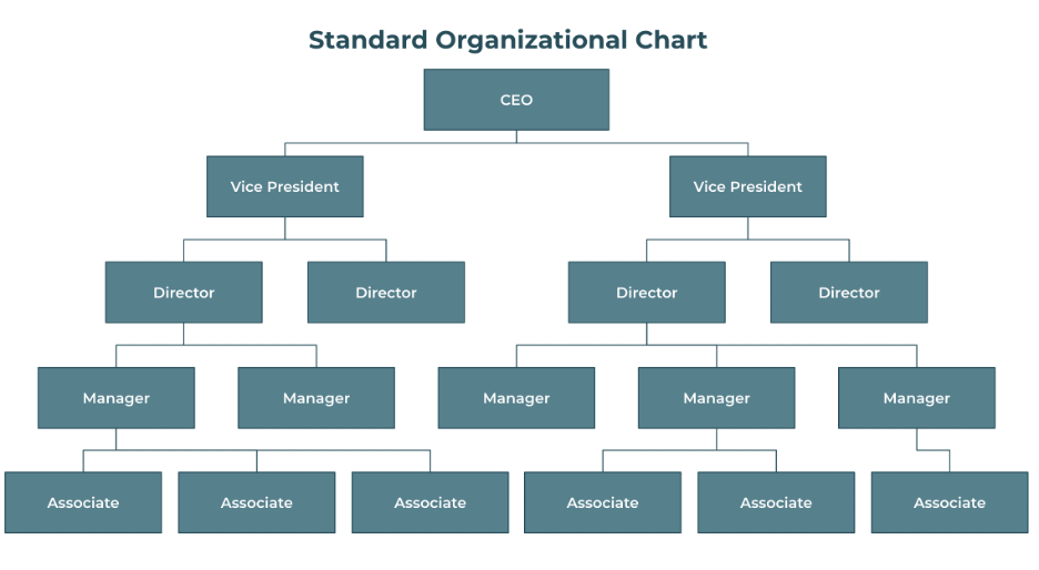organizational chart for small business - standard org chart example