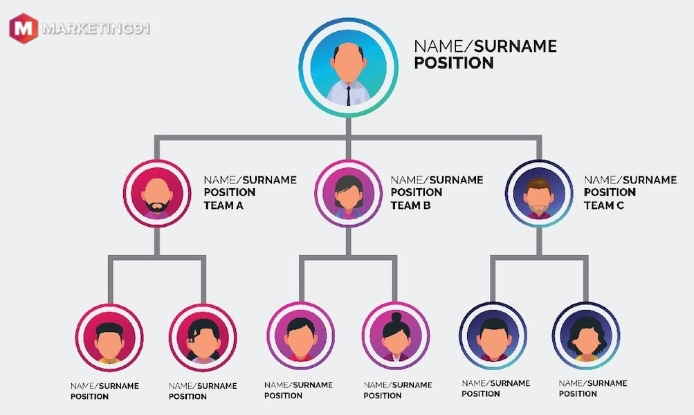 small business organizational structure - hierarchical structure