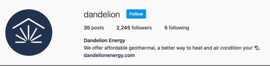 dandelion business description on instagram