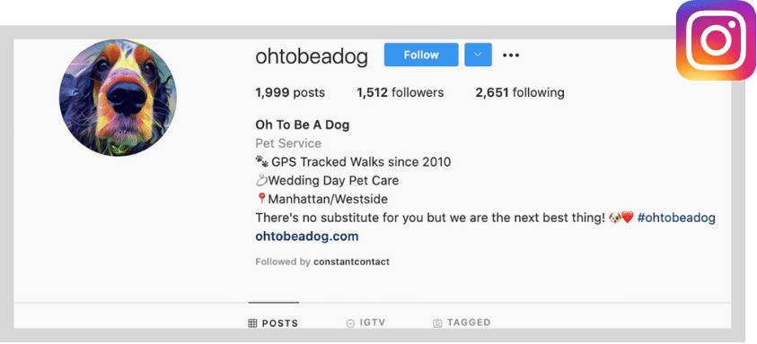 local social media marketing plan - instagram business profile