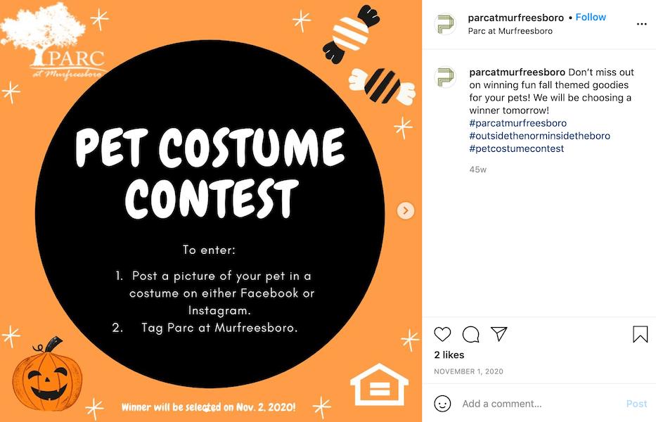 fall promotion idea - run fall themed contest